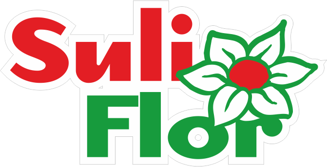 Sulinkiai logo